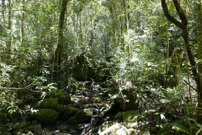 Kinabalu_Park_4_travel2eat