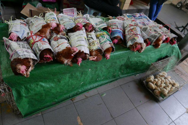 Verpackte (noch lebende) Hühner auf dem Zentralmarkt