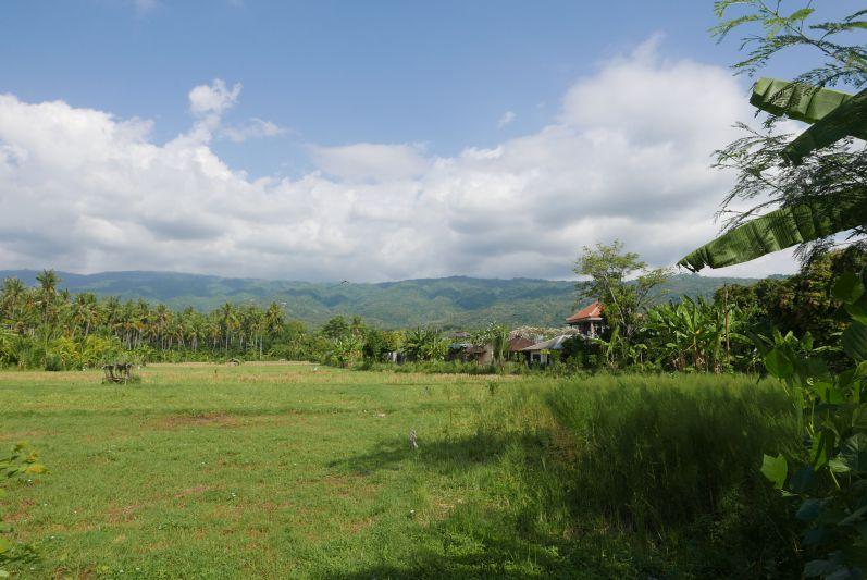 Lovina_Bali_travel2eat (5)