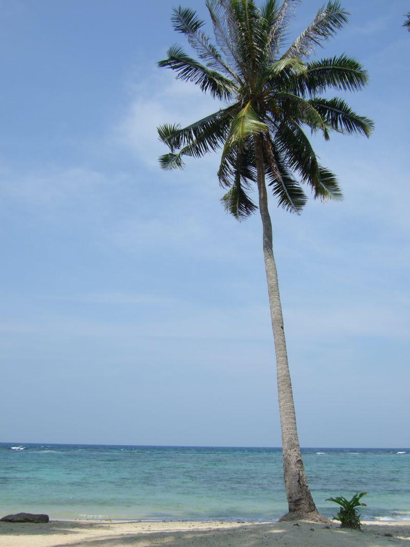 Nirvana_Beach_Karimunjawa_travel2eat (2)
