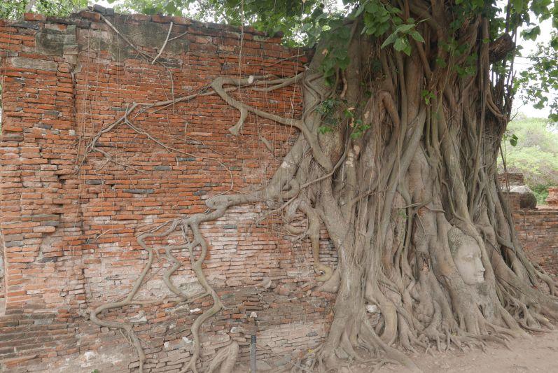 historische_Tempel_ayutthaya_travel2eat (7)