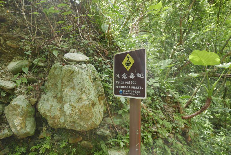 Schlangenschild_taroko_gorge_Hualien_travel2eat