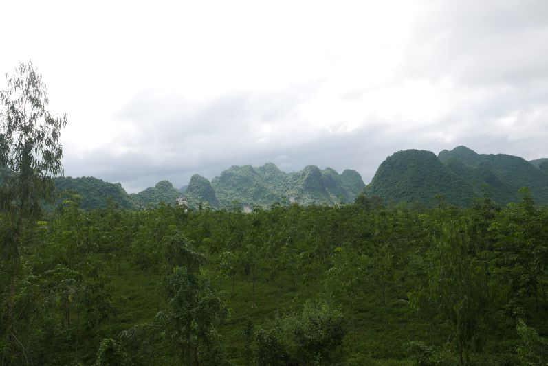 Landschaft_Phong_Nha_travel2eat