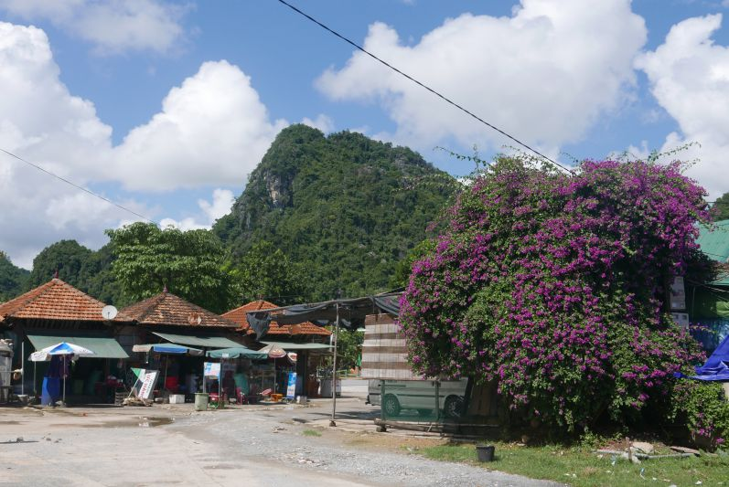 Markt von Son Trach inklusive wunderschöner Umgebung