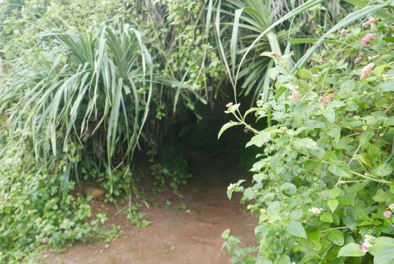 Ein weiterer Eingang