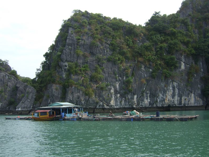 Bootstour_Lan_Ha_Halong_travel2eat (3)