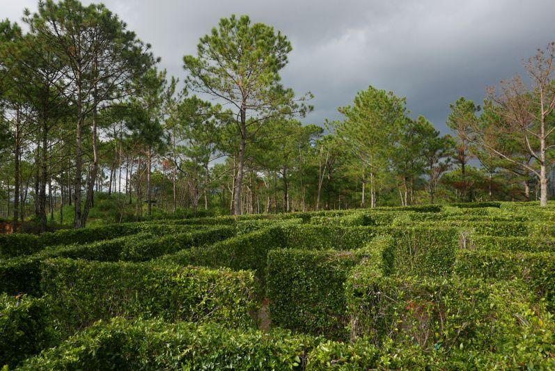Wir haben aus dem Liebes-Labyrinth herausgefunden