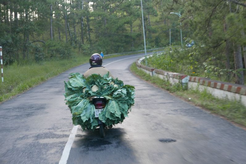 Moped_2_Dalat_travel2eat