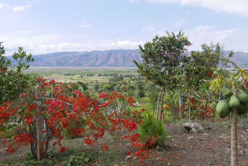 Red_Mountain_Winery_Tour1_Inle_See_Myanmar_travel2eat (2)