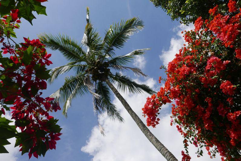Gitgit_Bali_travel2eat (2)