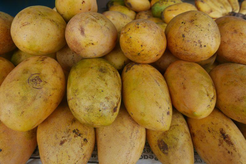 Die philippinischen Mangos sind sooooo gut
