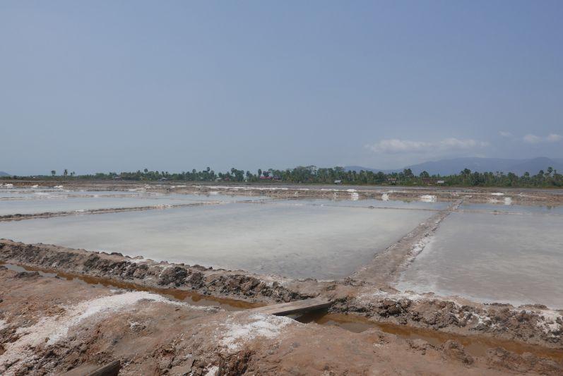 Salzfelder bei Kampot