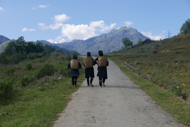 Dafür gibt's im Norden tolle Berge (Sapa)