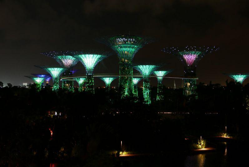 Jedes Mal, wenn wir in Singapur sind schauen wir uns die kostenlose Lichtshow in den Gardens by the Bay an