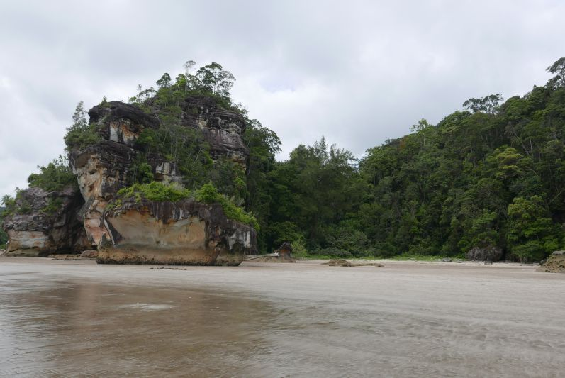Bako-Nationalpark in Malaysia (Borneo)