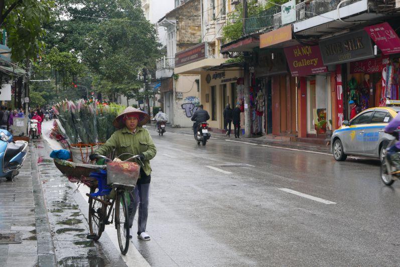 Blumenverkäuferin In Hanoi (Vietnam)