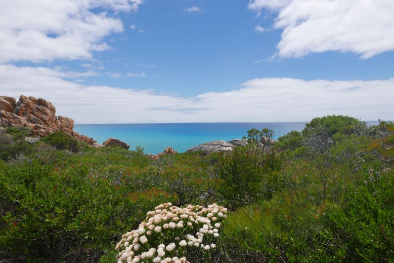 wanderweg_dunsborough_eagle_bay_travel2eat-2