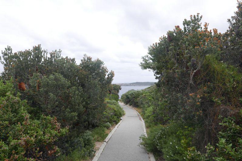 Wege im Torndirrup Nationalpark