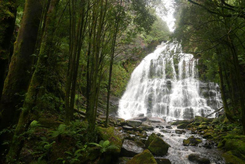 nelson_falls_tasmanien_travel2eat-2