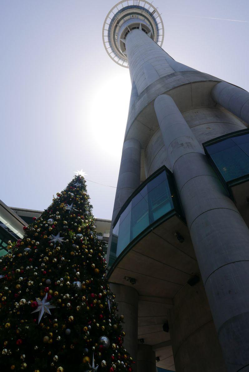 Auf den Skytower sind wir nicht rauf (kostet 29 NZ Dollar pro Person)