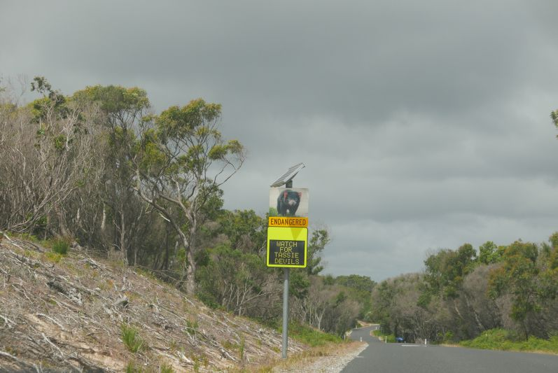 on_the_road_tasmanien_travel2eat-3