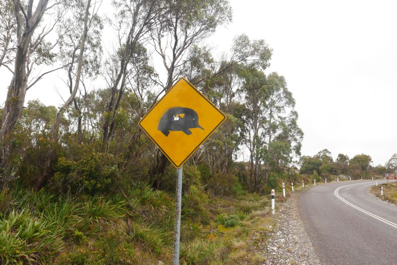 on_the_road_tasmanien_travel2eat-9