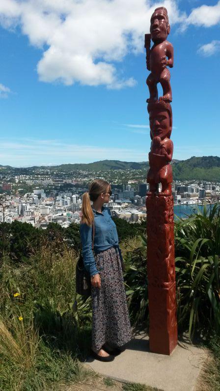 Wellingon vom Mount Victoria
