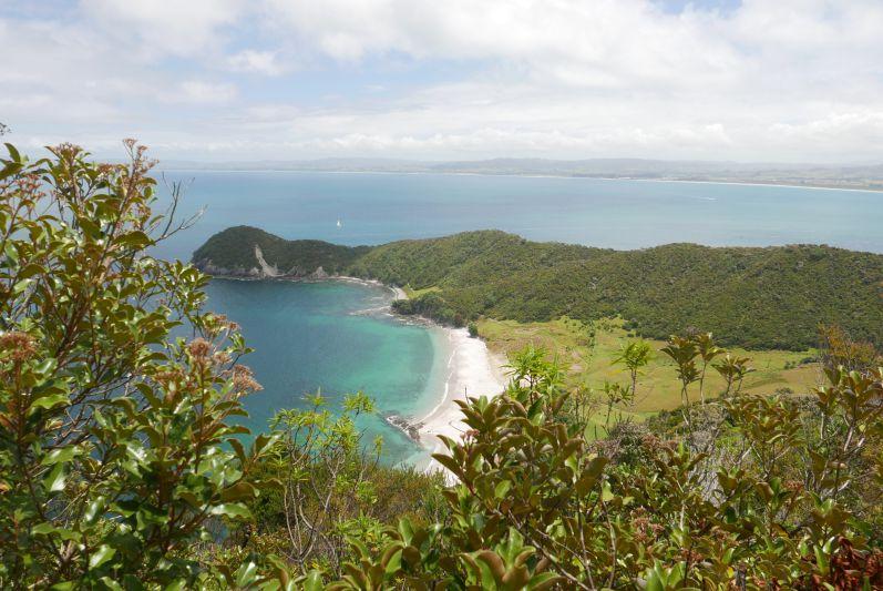Aussicht auf den Busby Head und die Smugglers Bay vom Mt. Lion
