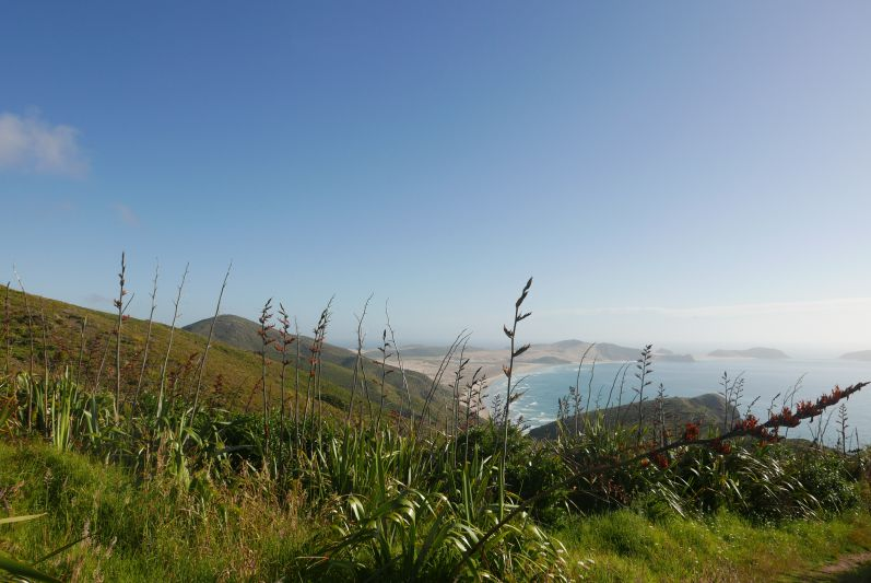 Cape_Reinga_Northland_Neuseeland_travel2eat (4)