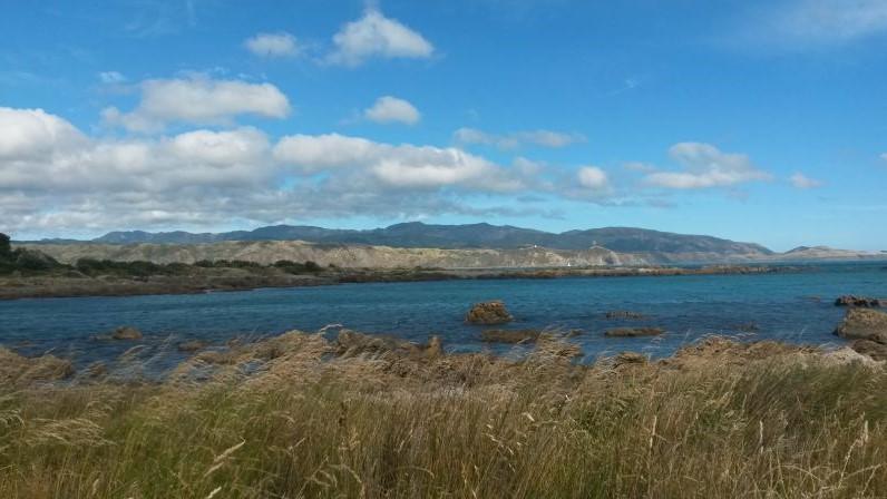 Aussicht von der Halbinsel Miramar