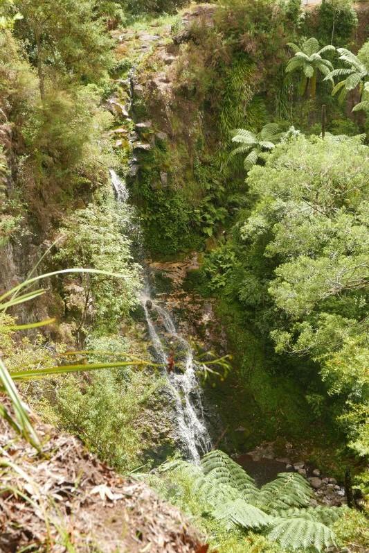 Pukenui Falls