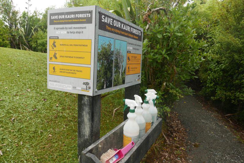 Waitakere_Ranges_Park_Auckland_travel2eat (5)