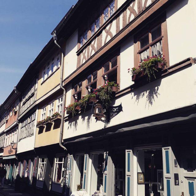 2 weeks ago in erfurt toocutetobetrue beautifulhouses krmerbrcke sobeautiful sightseeinghellip