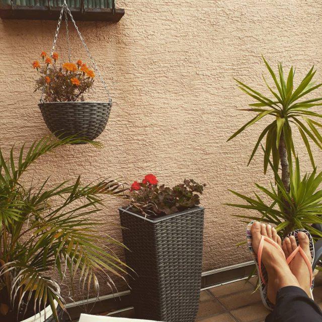 Still kinda living the aussielife flipfloplove havaianas tdehavaianas sundays missingaustraliahellip