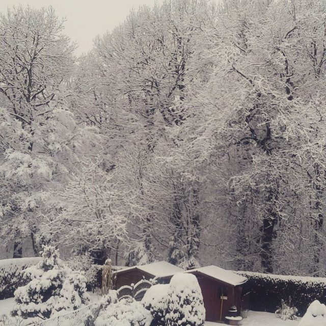 Meanwhile my home town turned into winterwonderland snow winteringermany thringenhellip
